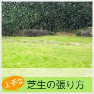 上手な芝生の張り方