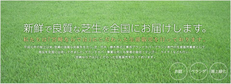 有限会社 森農園から新鮮で良質な芝生を全国にお届けします。