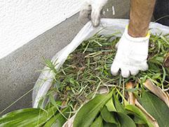 ①床土の準備