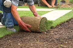 ②芝生を張り詰める